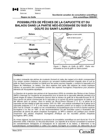 Visualiser le document complet en format PDF - Pêches et Océans ...