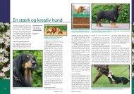 PDF-file: Hovawart - Dansk Kennel Klub