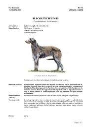 PDF-file: Hjortehund - Dansk Kennel Klub
