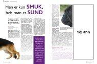 Man er kun smuk, hvis man er sund - Dansk Kennel Klub