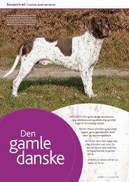 Raceportræt Gammel dansk hønsehund - Dansk Kennel Klub