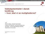 Vækstpotentialet i Dansk landbrug - hvor skal vi se ... - dlg