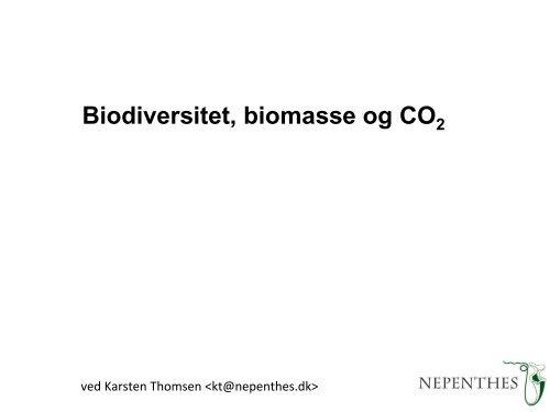 Skove er vigtige for globalt carbon