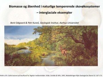 Biomasse og åbenhed i naturlige tempererede skovøkosystemer ...