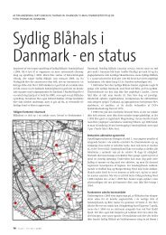 Sydlig Blåhals i Danmark - en status