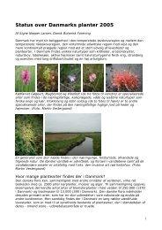 Status over Danmarks planter 2005 - Dansk Ornitologisk Forening