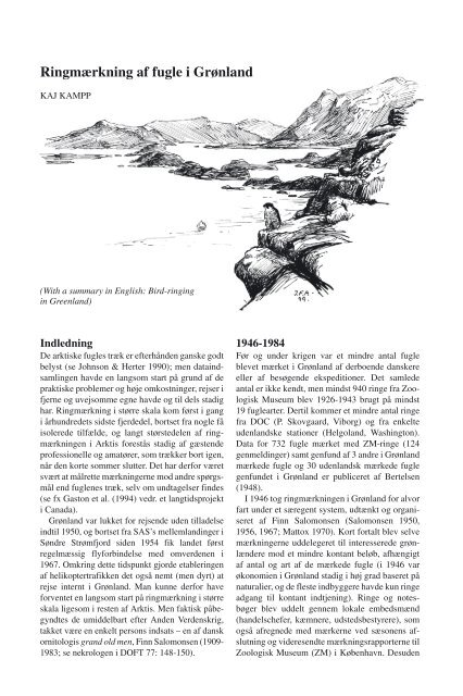 Ringmærkning af fugle i Grønland -- Kaj Kampp