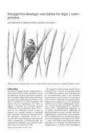 Energipil-bevoksninger som habitat for fugle i vinterperioden