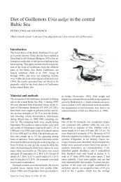 Diet of Guillemots Uria aalge in the central Baltic Sea -- Peter Lyngs ...