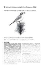 Truede og sjældne ynglefugle i Danmark 2002 - Dansk Ornitologisk ...
