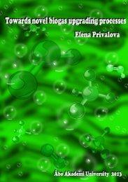 Towards novel biogas upgrading processes Elena Privalova - Doria