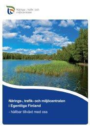 Närings-, trafik- och miljöcentralen i Egentliga Finland ... - ELY-keskus