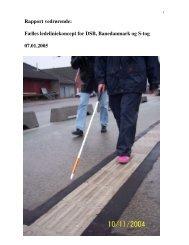 Rapport vedrørende: Fælles ledeliniekoncept for DSB ...