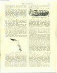 Thijsse, Jac .P.,1901. De harkwesp - Duinen en mensen - Page 2