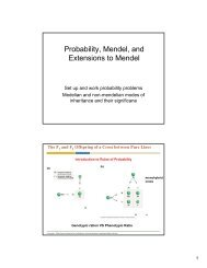 Probability, Mendel, and Extensions to Mendel