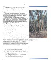 FIRE Mallee is fire-prone country. The vegetation is highly ...