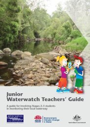 Junior Waterwatch Teachers' Guide - Department of Environment ...