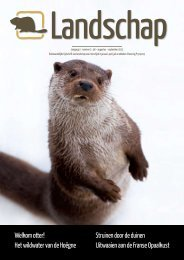 Welkom otter! Het wildwater van de Hoëgne Struinen ... - EOSzine