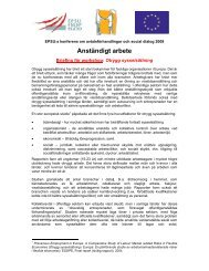 CB Conference Precarious Employment Briefing SV - EPSU