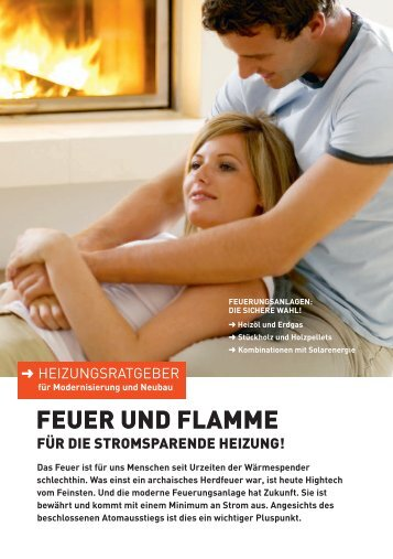 Download Heizungs- ratgeber (PDF) - Pro Kamin
