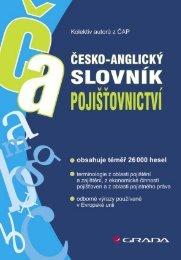 Česko-anglický slovník pojišťovnictví - eReading