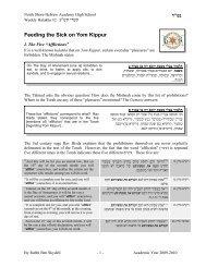 Feeding the Sick on Yom Kippur - Ericlevy.com