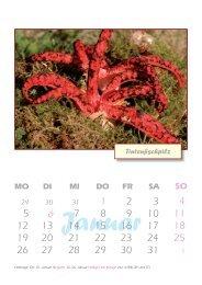 Gestaltung Kalender 2009.indd - ERiNET