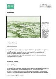 Wisenberg (pdf) - Erlebnisraum Tafeljura