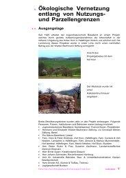 Vernetzungsprojekt Häfelfingen - Erlebnisraum Tafeljura