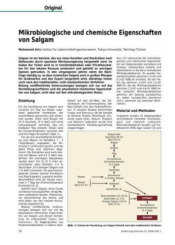 Arbeitsblatt Chemische Eigenschaften von Holz - Pyrolyse