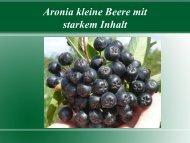 Aronia kleine Beere mit starkem Inhalt - BioLAGO