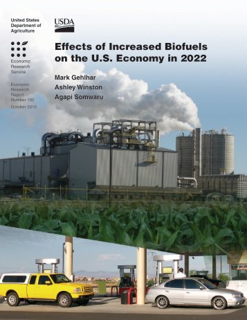 Effects of Increased Biofuels on the U.S. Economy in 2022