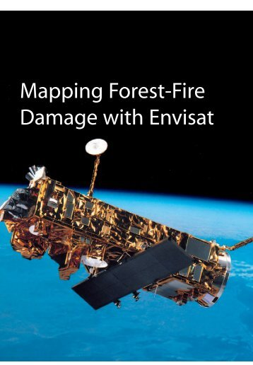 ESA Bulletin article: Mapping forest fire damage with Envisat