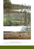 Recognition and Management of Endangered Ecological ... - Page 2