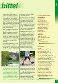 Schlaue Graue - Stadt Aschaffenburg - Seite 5