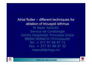 EHRA Educational Slides: Atrial flutter - different techniques for ...