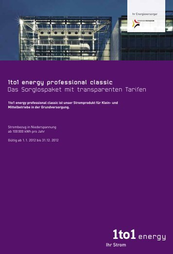 und Mittelbetriebe, 1to 1energy professional classic, Strombezug