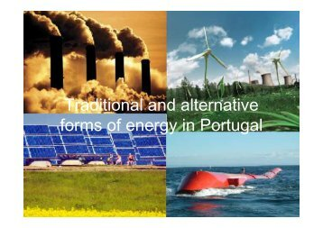 Traditional and Alternative Forms of Energy in Portugal - Esds1.pt