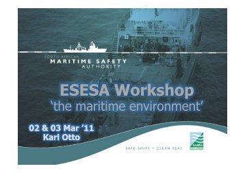 ESESA Workshop 02&03Mar2011 - SAMSA - CSWR - K Otto ...