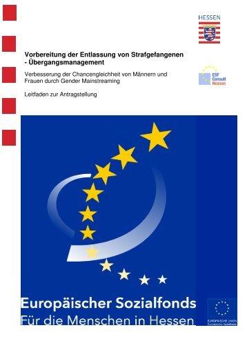 2009-09 GM Leitfaden Arbeitsmarktintegration ... - ESF Hessen