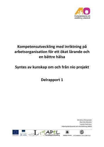 Kompetensutveckling med inriktning på arbetsorganisation för ett ...