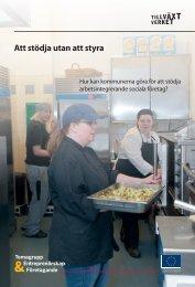 Att stödja utan att styra - Svenska ESF-rådet