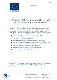 Transnationellt projektsamarbete inom Socialfonden – en introduktion