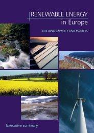 Executive Summary - European Renewable Energy Council