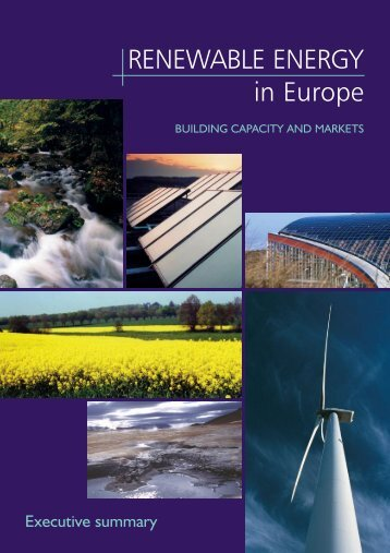 Executive Summary - European Renewable Energy Council