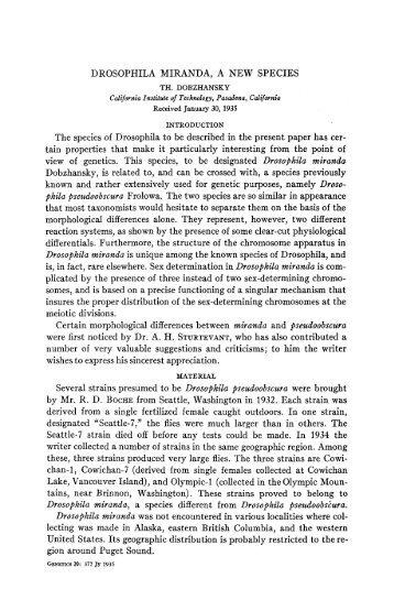 DROSOPHILA MIRANDA, A NEW SPECIES The species of ...