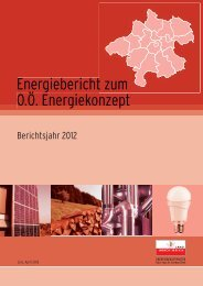 Energiebericht zum O.Ö. Energiekonzept - Berichtsjahr 2012