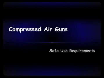 Compressed Air Guns