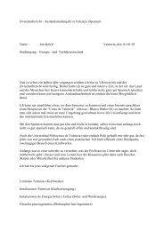 Zwischenbericht - Auslandsstudienjahr in Valencia (Spanien) Name ...