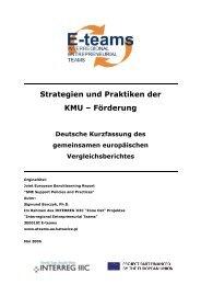 Strategien und Praktiken der KMU – Förderung - E-teams - Home